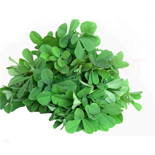 Fenugreek Leaves (Grade 1) (1 (Aprox 400gm) pcs)
