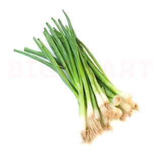 Spring Onion (350 gm)