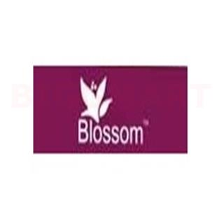 Blossom Special Seasoning Chinese Salt (25 gm)