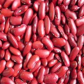 Rajma Red (Kashmiri) (500 gm)