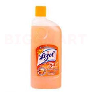 Lizol Sandle (500 ml)