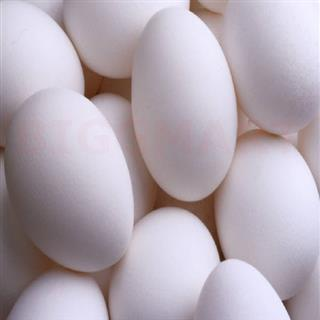 Golden Eggs (6 pcs)