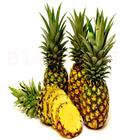 Pineapple Grade A (1 pcs)