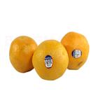 Orange Kinnow (Grade1) (6 pcs)